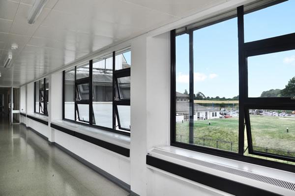 Britelite Commercial Windows